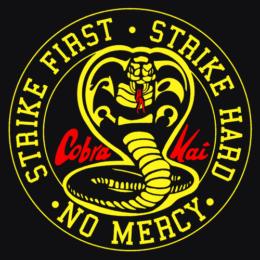 Cobra Kai, rilasciato il trailer della terza stagione